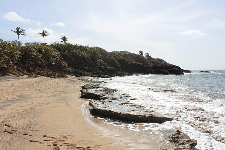 Whistle Beach in St. Croix