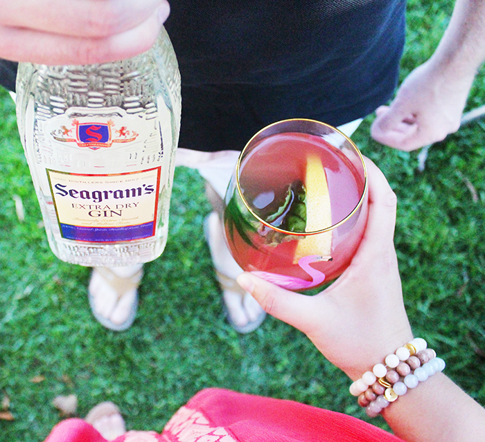 Seagram's Gin Cocktails