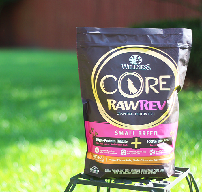 Wellness Core RawRev | How to Safely Feed Your Dog a Raw Dog Food Diet