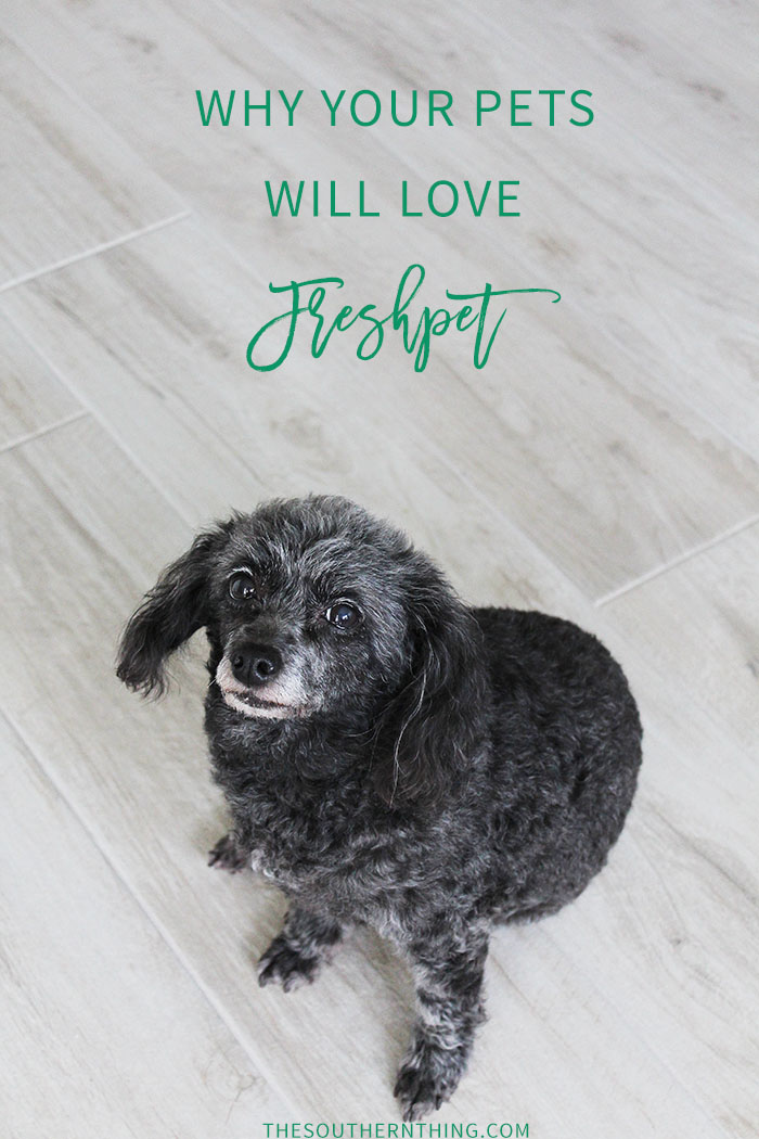 Why Your Pets Will Love Freshpet | A review of Freshpet refrigerated dog food